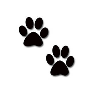 Clip Art Dog Paw Clip Art paw border clipart kid dog panda free images