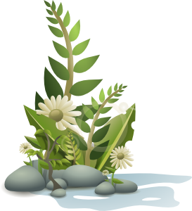 Andy Plants Pebbles And Flowers Clip Art At Clker Com   Vector Clip