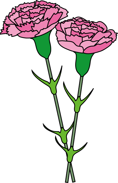 pink carnation clipart clipart suggest carnation clipart images red carnation clipart