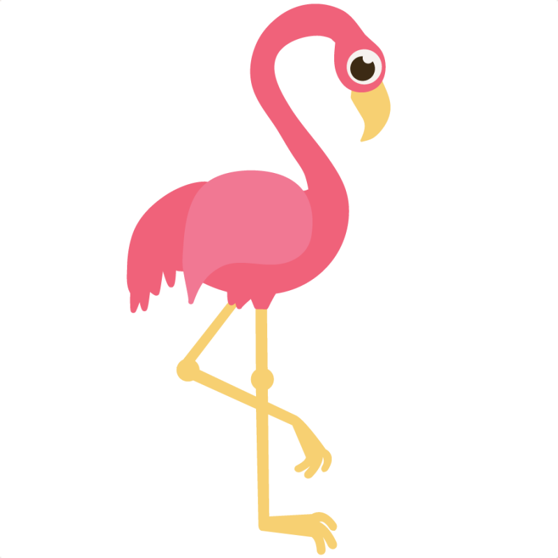 Clipart Flamingo   Cliparts Co