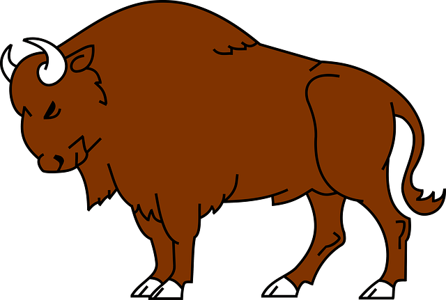 Cute Bison Clip Art You Can Add This Clip Art To