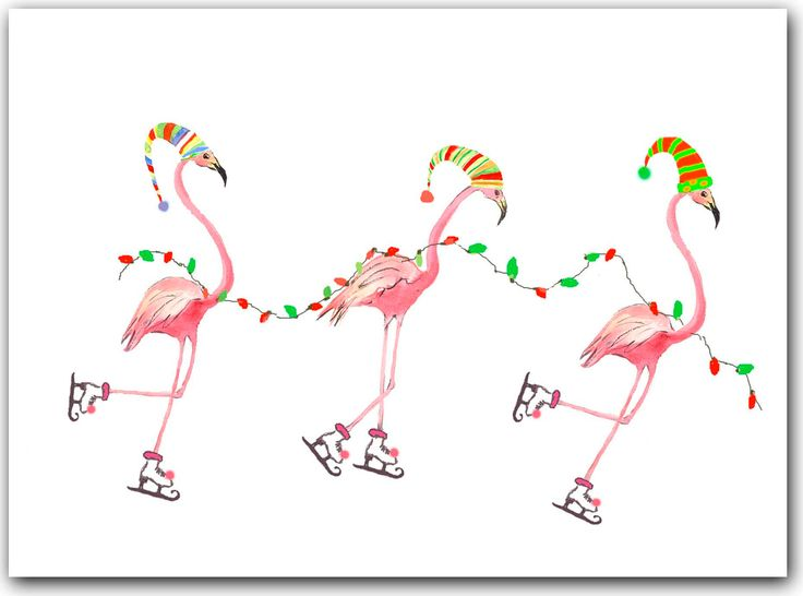 Flamingo Christmas Cards Tropical Christmas 10 Per Greeted Boxed Se