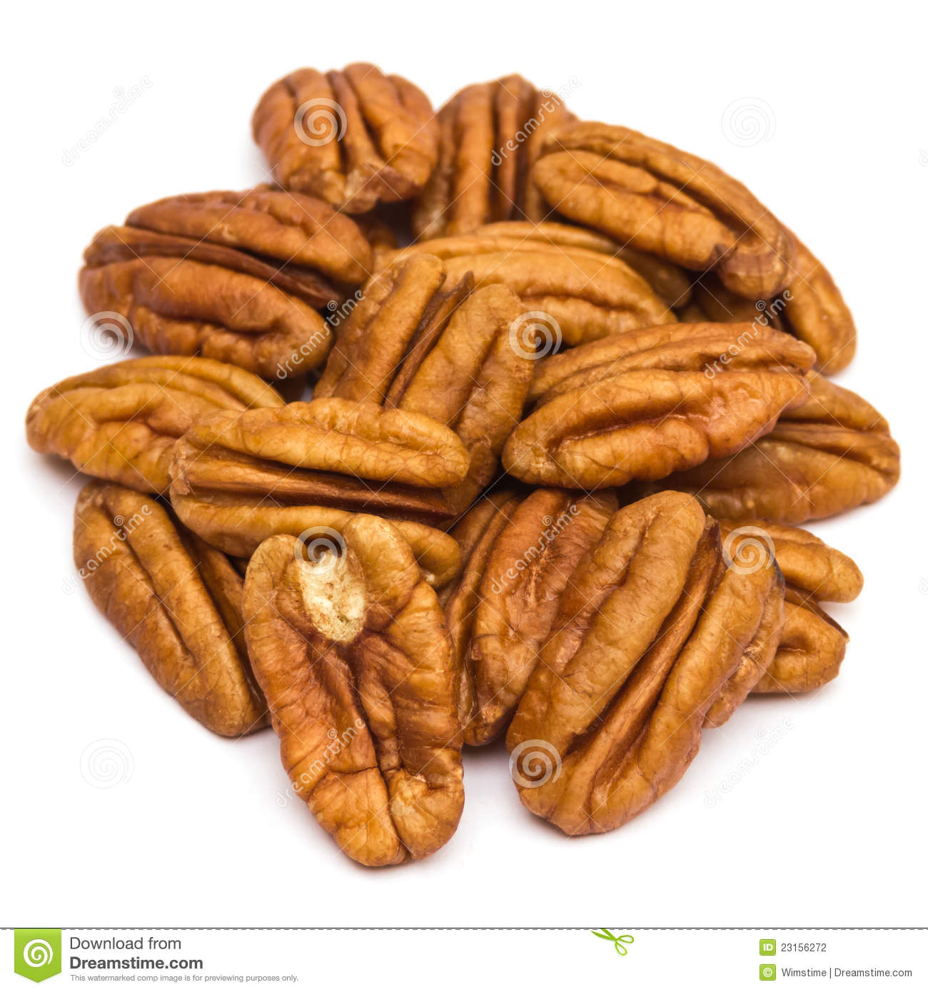 Pecan Nuts Stock Photography   Image  23156272