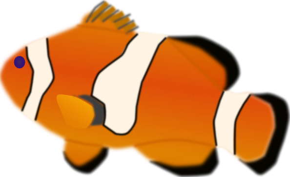 Aquarium Fish Amphiprion Percula Clip Art At Clker Com   Vector Clip