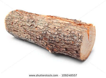 Tree log clipart clipart suggest for Tree log
