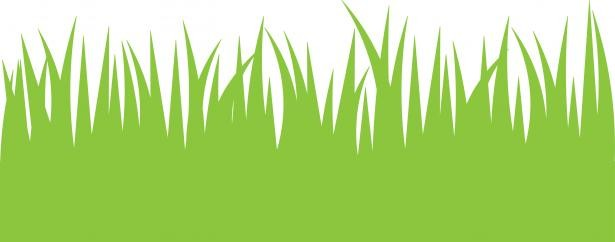 Tall Grass Clipart Norwottuck Lawn Care