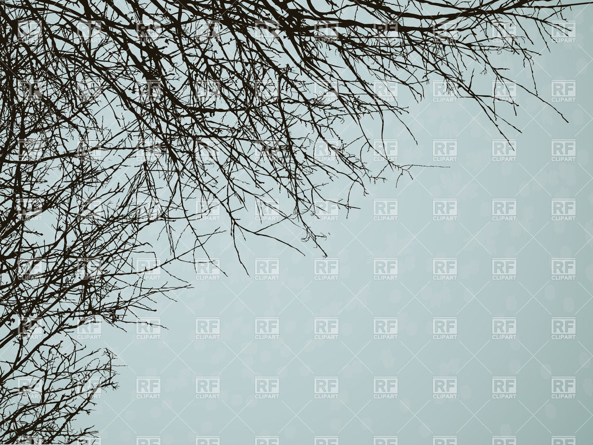 Leafless Tree Branches Download Royalty Free Vector Clipart  Eps