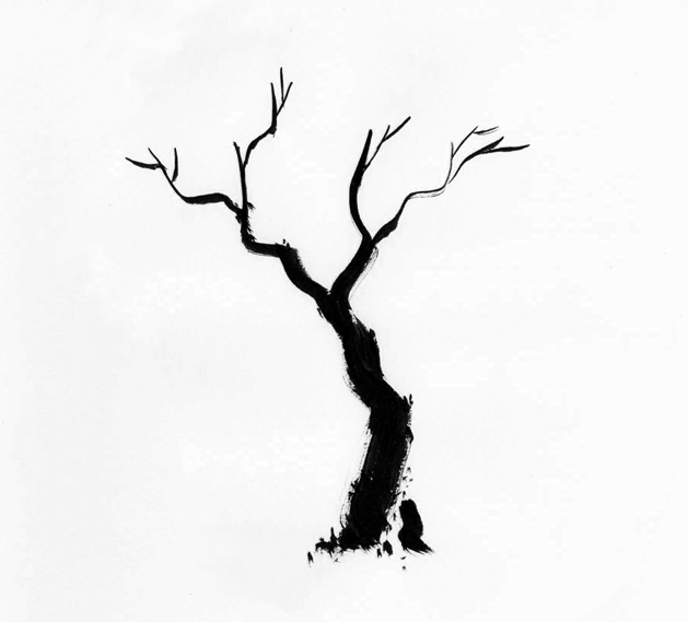 Leafless Tree Outline Free Cliparts That You Can Download To You