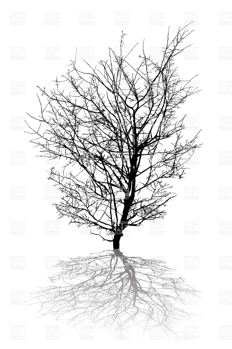 Leafless Tree Silhouette Tattoo Images   Pictures   Becuo