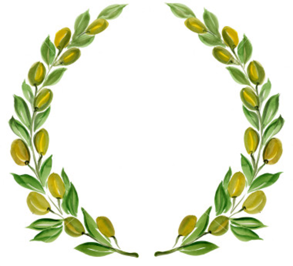 Istockphoto Olive Branch Wreath   Free Images At Clker Com   Vector