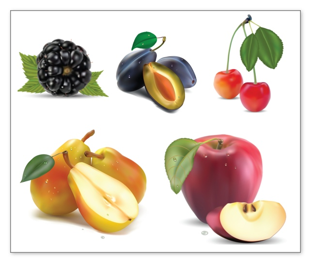 Fruits Vector Clipart Set Of 5 Beautiful Vector Fruits Clip Art This