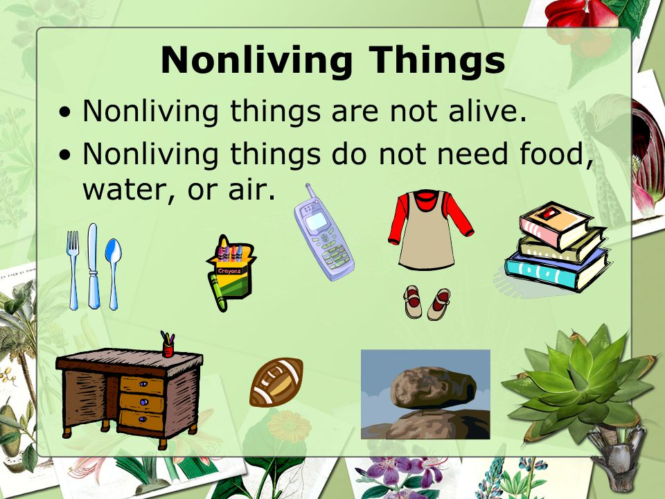 Non Living Things Clipart - Clipart Kid