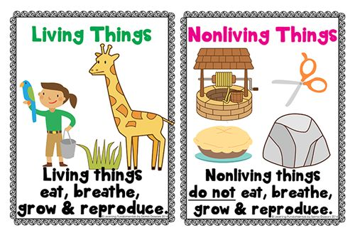 living and non living things Living things vs non-living things living things and non-living things are subjects that one has to master the basic of all sciences relies on the student learning to differentiate between the two.