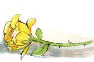 Single Yellow Rose Church Clipart - Clipart Kid