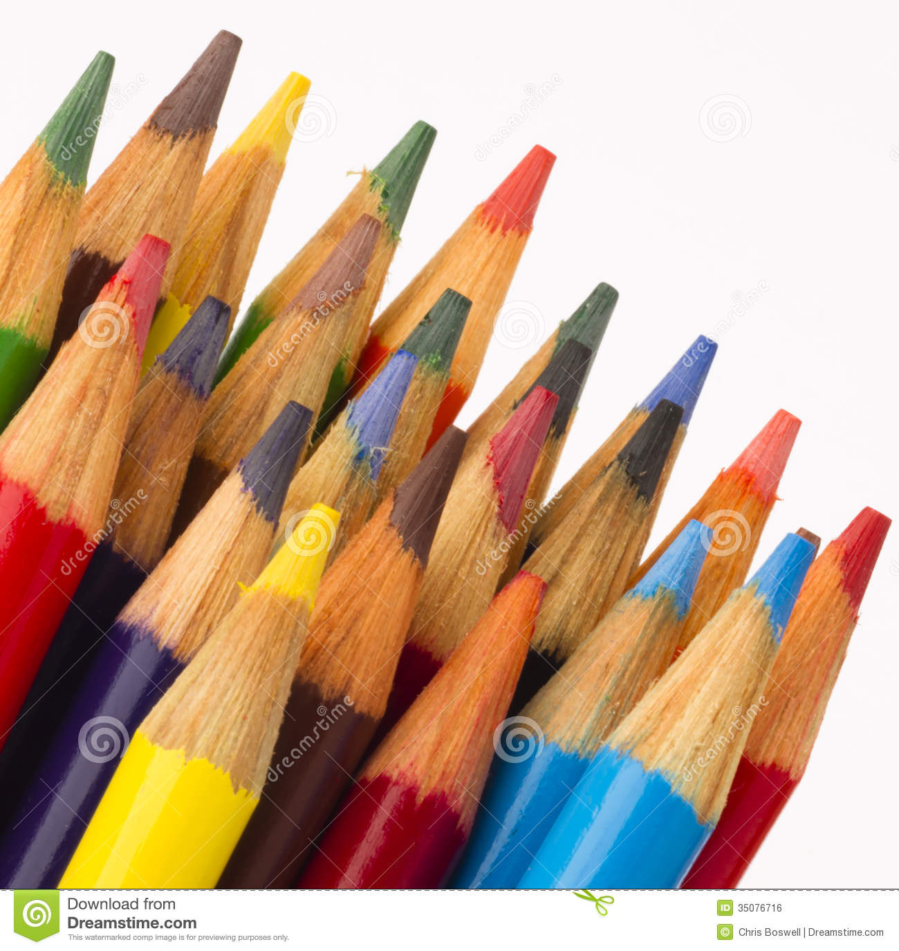 Macro Close Up Wood Multiple Color Art Supply Pencils Royalty Free
