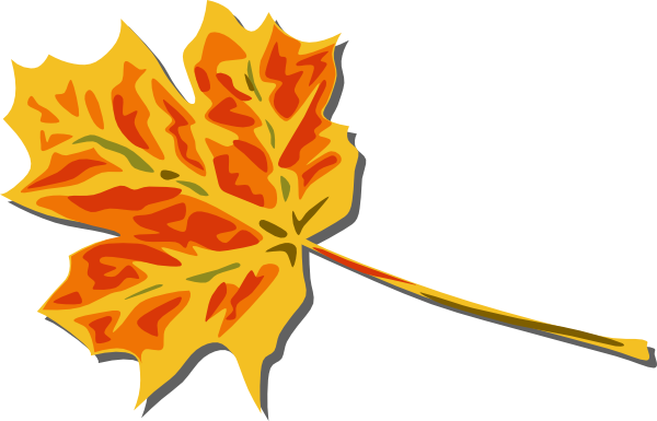 Fall Coloured Leaf Clip Art At Clker Com   Vector Clip Art Online