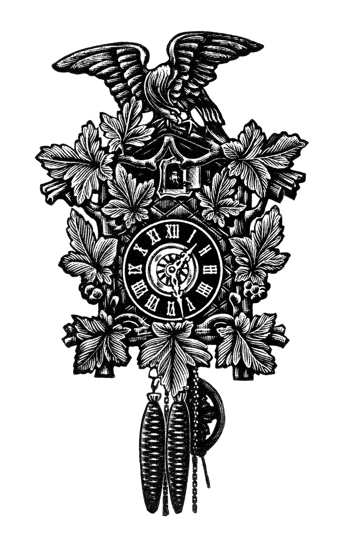 Cuckoo Clock Bird Illustration Antique Cuckoo Clocks   Free