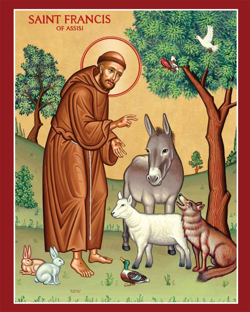 St Francis Assisi Prayer Card