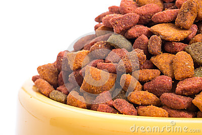 Close Up Dry Food Cat From A Bright Yellow Bowl  Isolated White