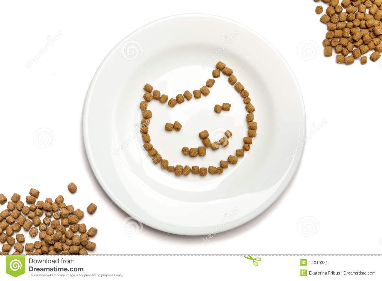 Dry Cat Food Forming Cat S Face On A White Plate And Heaps Of Food