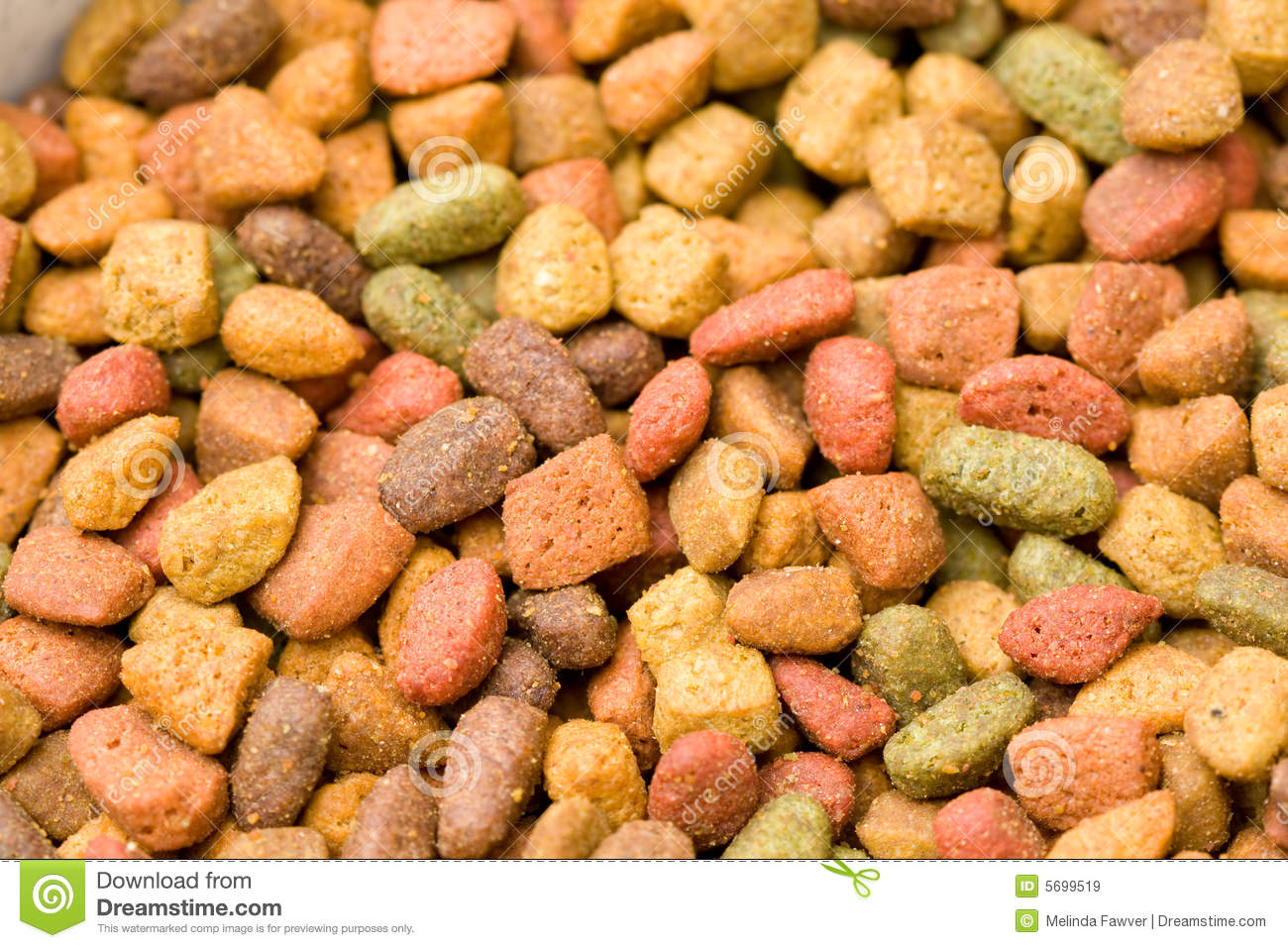 Dry Cat Food Royalty Free Stock Images   Image  5699519
