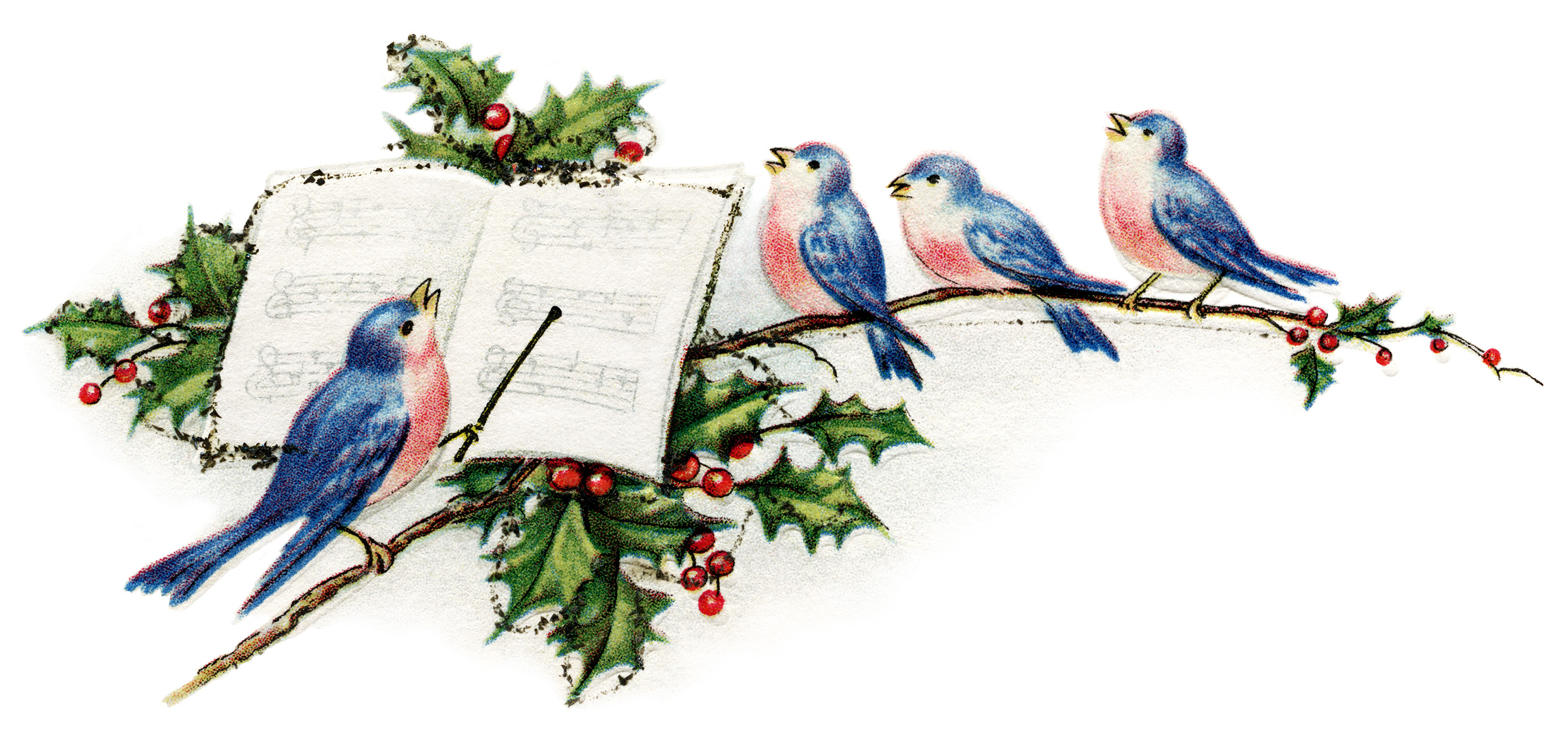 Blue Pink Birds Illustration Vintage New Year Postcard Singing Birds