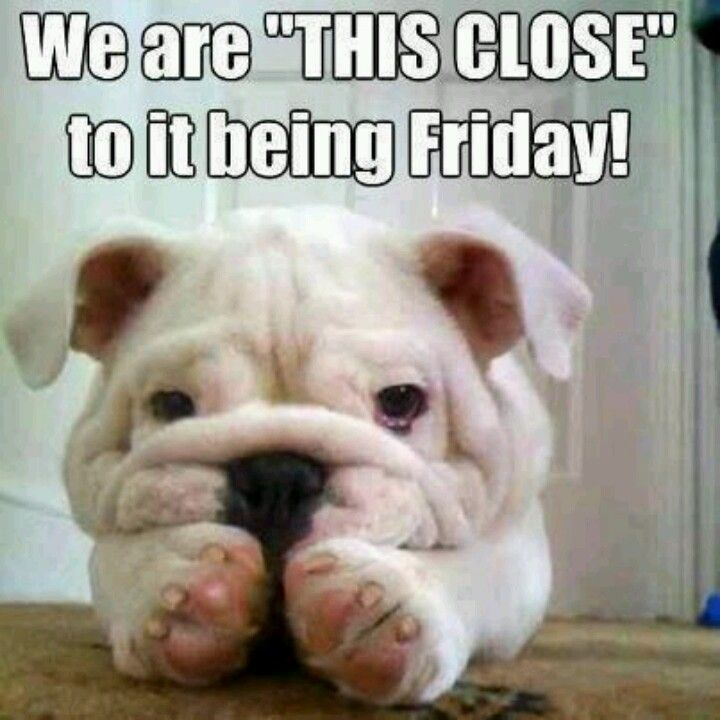 Thank God Its Almost Friday   Pins For Others   Pinterest