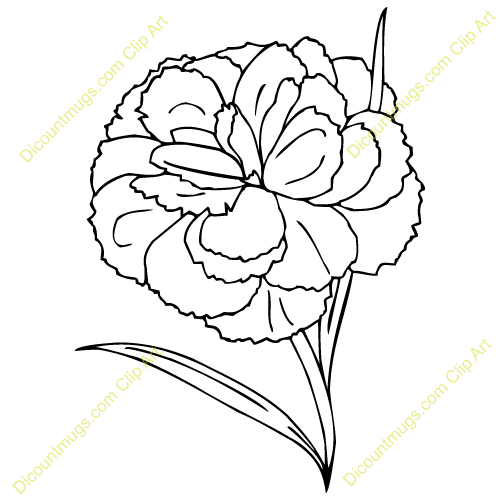 Clip Art Carnation Clip Art carnation black clipart kid flower drawing free clipart