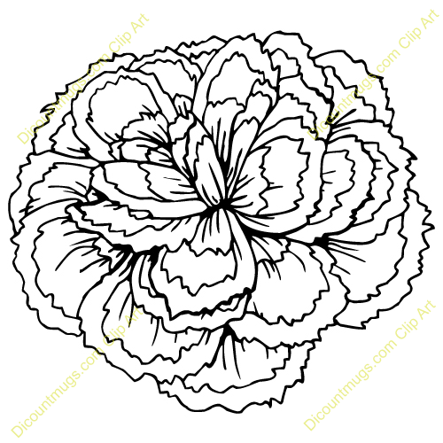 Clip Art Carnation Clip Art carnation black clipart kid description a large flower keywords carnation