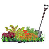 Autumn Harvest Vegetables On The Grass And Shovel   Clipart Graphic