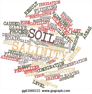Clipart   Word Cloud For Soil Salinity  Stock Illustration Gg63089333