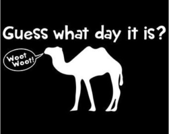 Hump Day Clip Art Guess What Day It Is