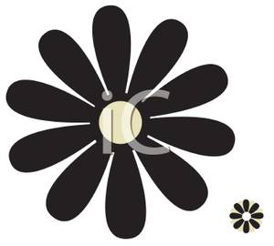 Black And White Daisy   Royalty Free Clipart Picture