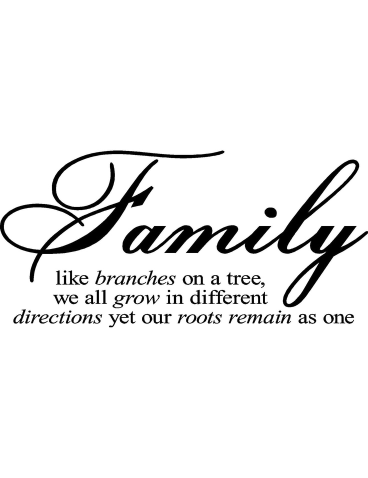 Quotes Family Quotes Life Family Trees Inspiration Roots So True