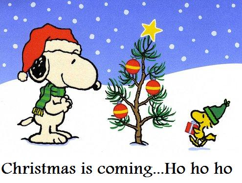 Snoopy Christmas Cartoons Snoopy Xmas Pictures Jpg