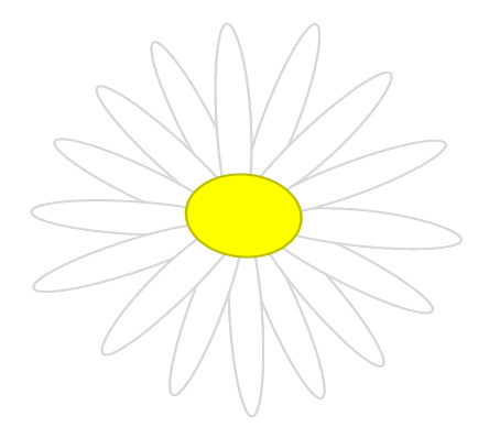 White Daisy Sketch Clipart 7cm Wide   This Clipart Drawing