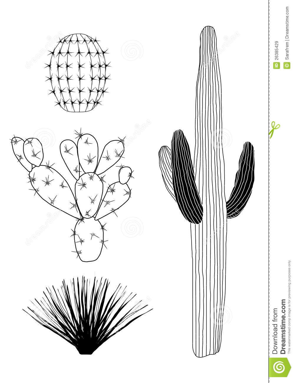 Cactus Black And White Clipart - Clipart Suggest