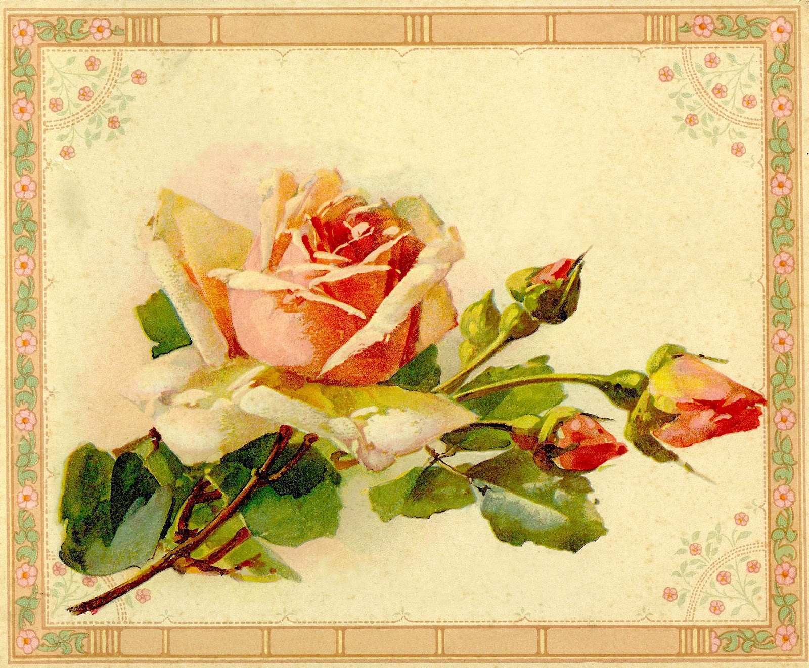 Clip Art  Yellow Rose Image From Antique Painting Instruction Book