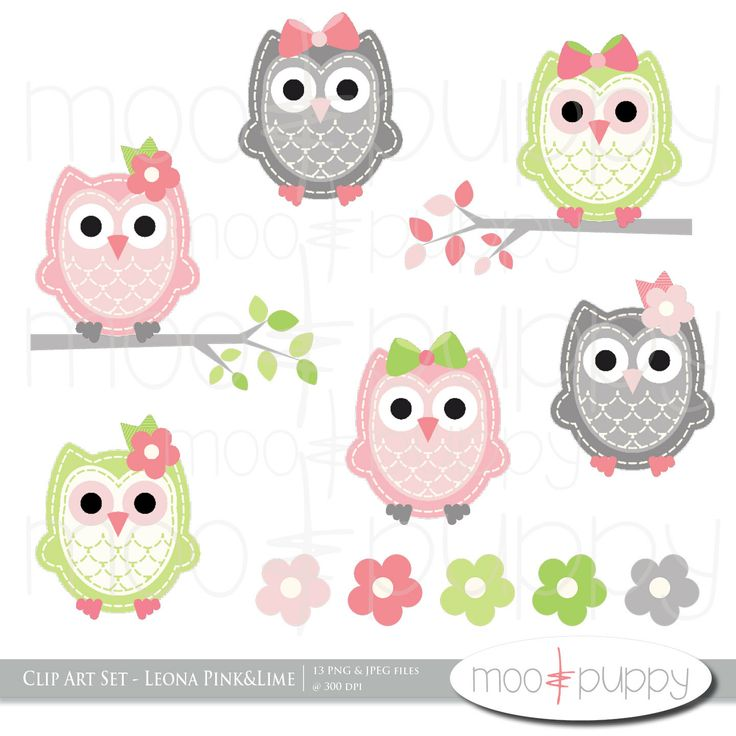 Owl Clip Art   Leona Pink Lime    Instant Download