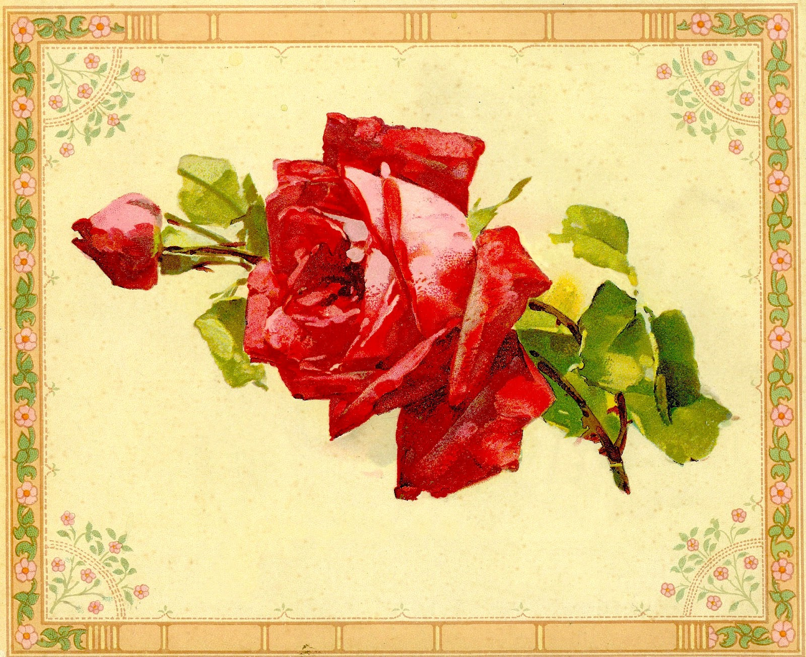 Vintage Flower Clip Art  Red Rose Graphic From Vintage Painting Book
