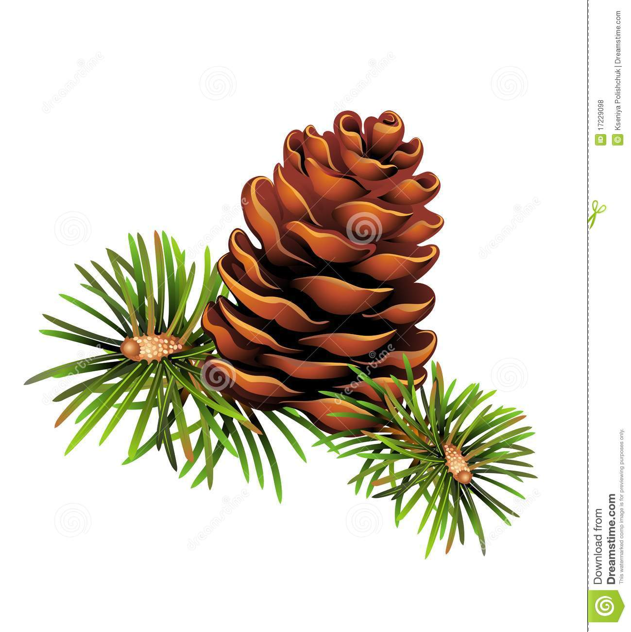 christmas pine clipart clipart suggest