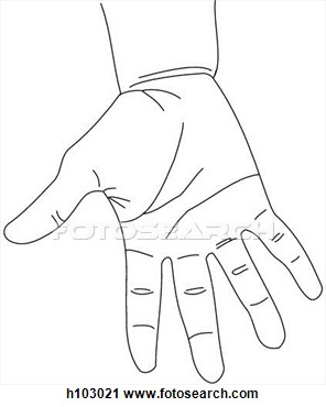 Clipart Of Palmar Aspect Of Hand And Wrist H103021   Search Clip Art