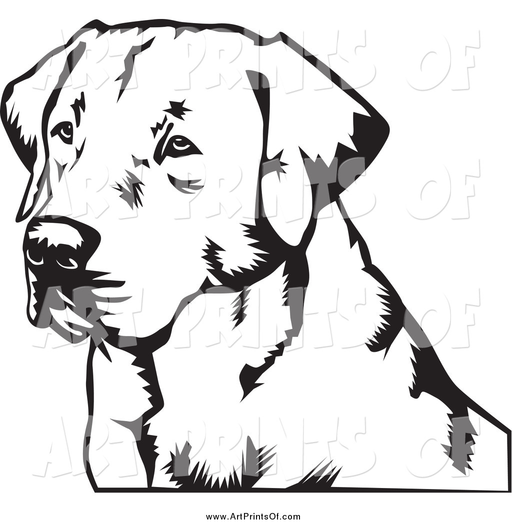 Black and white dog drawing - photo#37