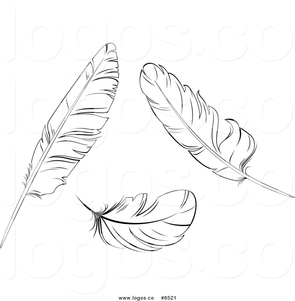 clip art red and white feathers clipart clipart suggest
