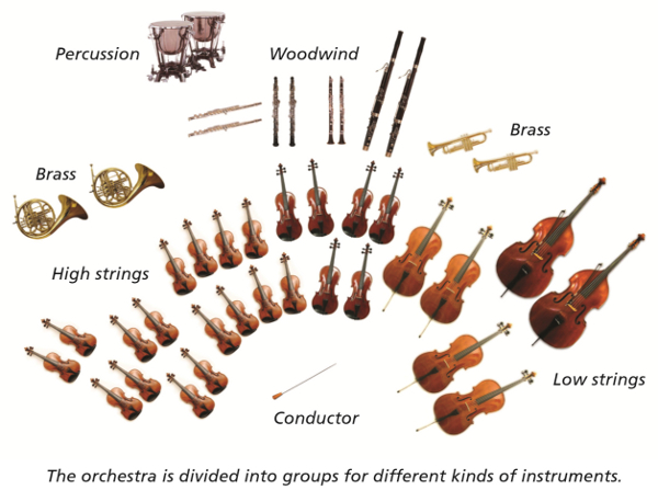Instruments Of The Orchestra Strings Even When All The Instruments