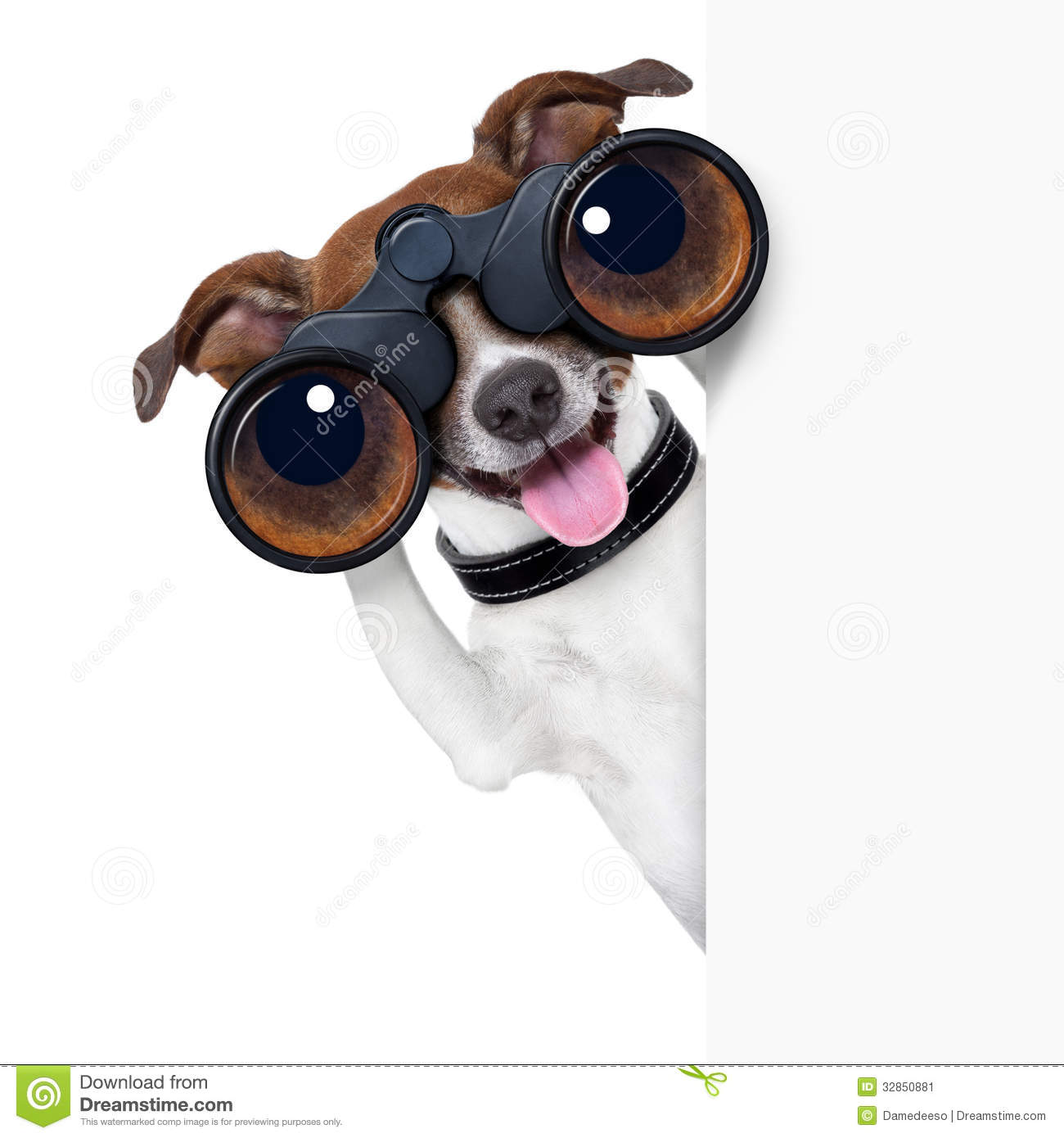 Looking Through Binoculars Clipart Binoculars Dog Stock Image