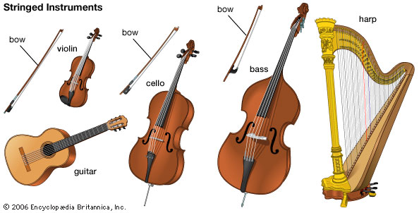 Stringed Instruments Include The Violin The Guitar The Cello The
