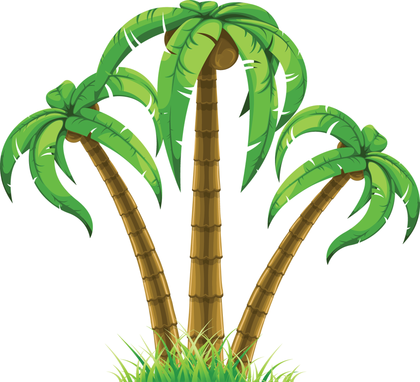 Cartoon Palm Tree Clip Art   Cliparts Co