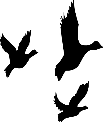 Flying Duck Free Clipart - Clipart Kid