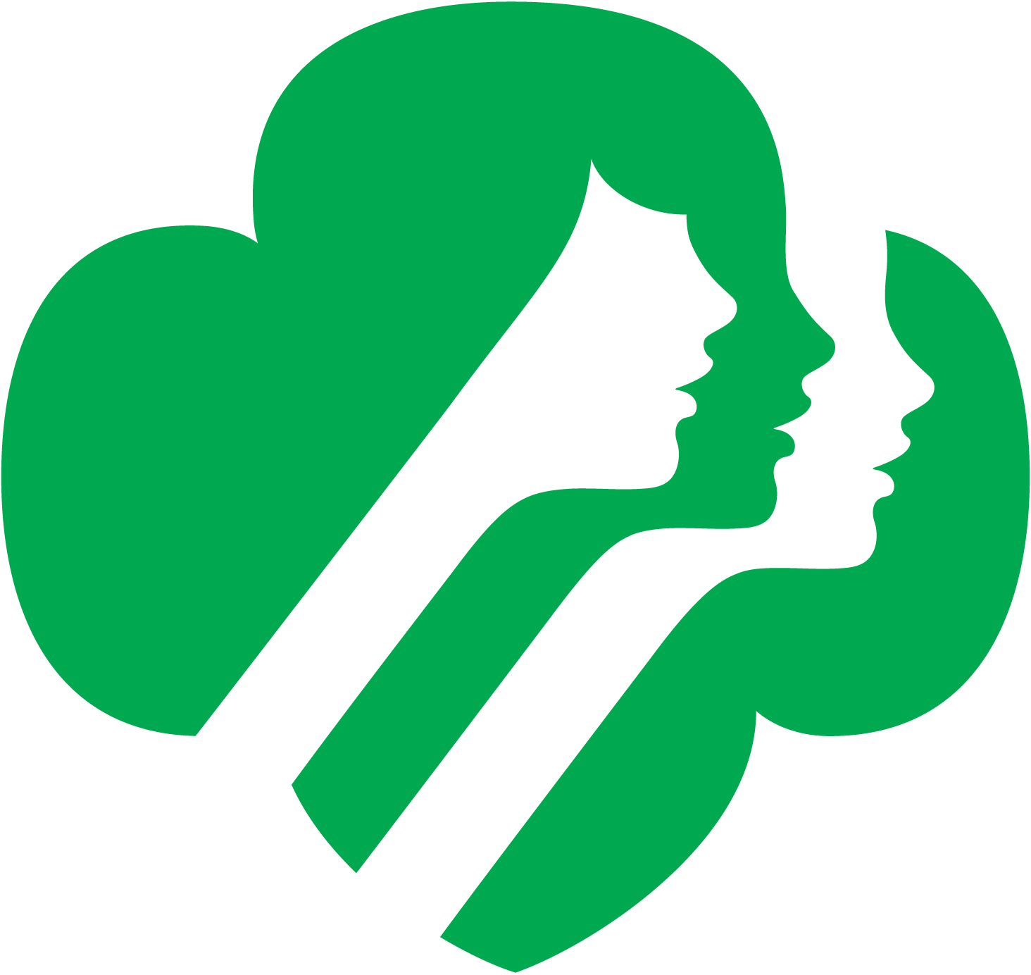 Girl Scouts Of Southwest Indiana Inc    Volunteer Essentials